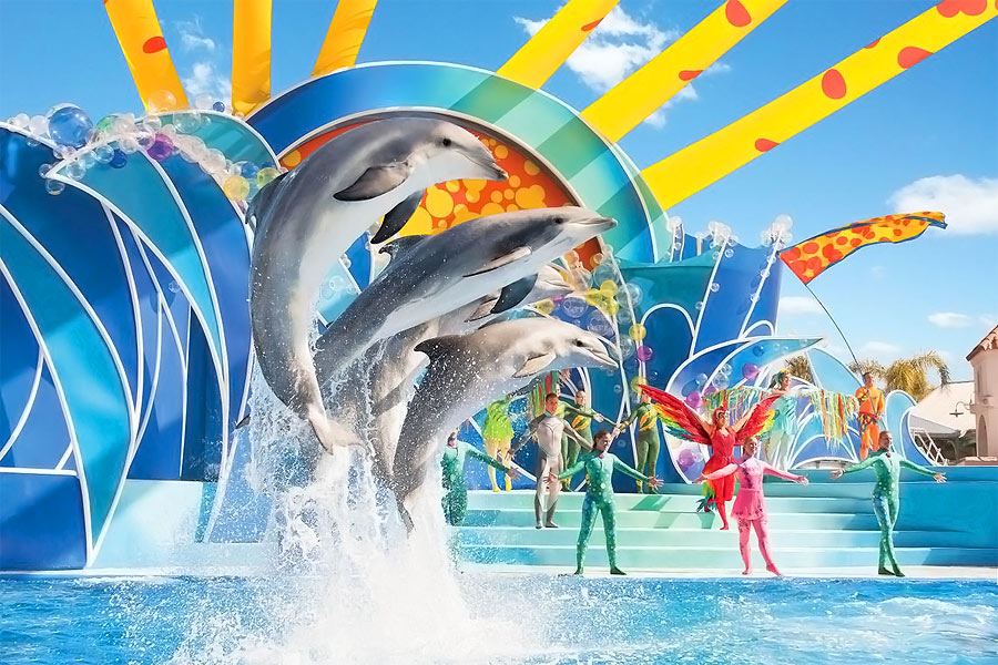 Seaworld-dolphin-show2-900x600px