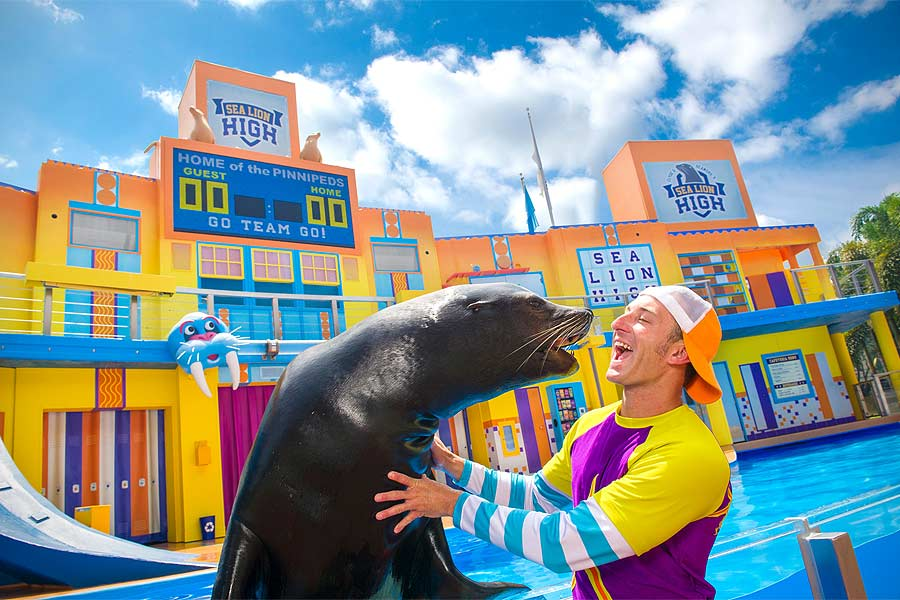 Seaworld-sea-lion-900x600px